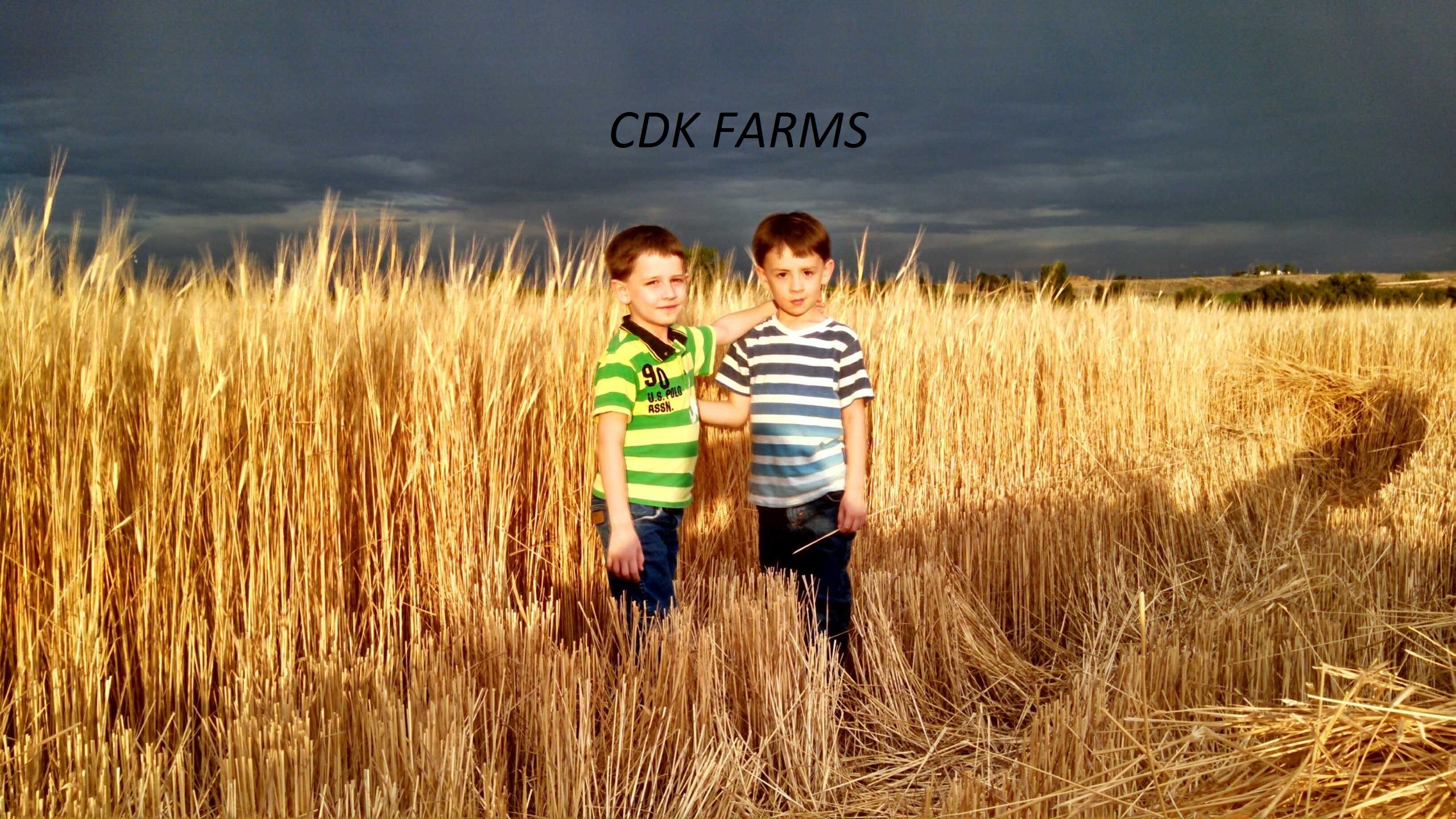 CDK Organic Farms